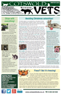 christmasnewsletterimage
